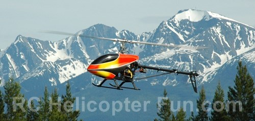 600 Size RC Helicopter